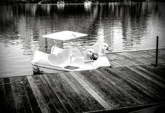 A fileira de barcos da cisne denomina o black&white no lago Imagem de Stock Royalty Free
