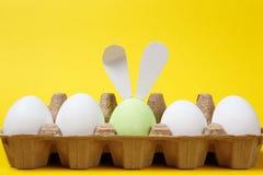 Fileira de branco e de claro - ovos da páscoa pintados verdes com as orelhas do coelho do divertimento na bandeja do cartão no fu fotos de stock royalty free