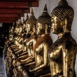 A fileira de estátuas douradas da Buda fotos de stock