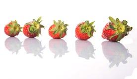 Fileira de frutos das morangos IV imagem de stock royalty free