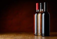Fileira de garrafas de vinho da árvore Foto de Stock Royalty Free