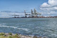 Fileira de guindastes do porto Fotos de Stock