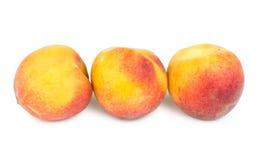 Fileira de pêssegos maduros Imagens de Stock Royalty Free