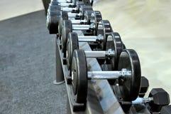 Fileira de pesos do metal na cremalheira no gym, clube de esporte Imagem de Stock