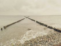 A fileira de pilhas de madeira velhas como o quebra-mar na frente da praia rochoso fotografia de stock royalty free