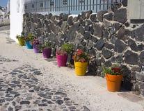 Fileira de potenciômetros de flor coloridos diferentes em Santorini Foto de Stock
