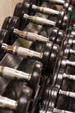 Fileira do equipamento de treino do peso dos Barbells da mão Foto de Stock