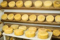 Fileira do queijo do envelhecimento em prateleiras de madeira no amadurecimento foto de stock