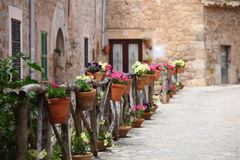 Fileira dos vasos de flores que alinham uma rua Fotos de Stock Royalty Free