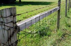 Fileira farpada da cerca Fotos de Stock