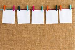 Fileira pura de pendurar blocos de notas brancos vazios Fotografia de Stock Royalty Free