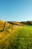 Fileira velha da cerca em um pasto Imagem de Stock