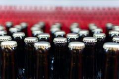 Fileiras da garrafa Imagens de Stock Royalty Free