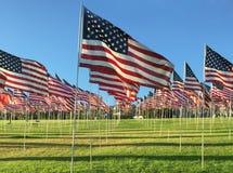 Fileiras de bandeiras americanas Fotografia de Stock Royalty Free
