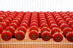 Fileiras de lanternas chinesas fotografia de stock royalty free