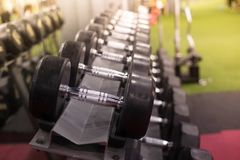 Fileiras de pesos do metal na cremalheira/clube de esporte Peso que treina E Foto de Stock