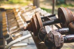 Fileiras de pesos do metal na cremalheira no gym Imagem de Stock