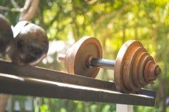 Fileiras de pesos do metal na cremalheira no gym Fotografia de Stock Royalty Free