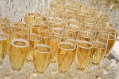 Fileiras de vidros de Champagne Imagens de Stock