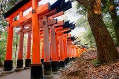 Fileiras do grande torii vermelho no santuário de Fushimi Inari fotografia de stock