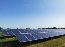 Fileiras dos painéis solares do picovolt Foto de Stock