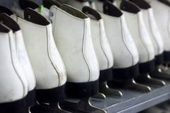 Fileiras dos patins de gelo brancos, material desportivo do inverno, prateleiras com patins fotos de stock royalty free
