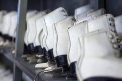 Fileiras dos patins de gelo brancos, material desportivo do inverno, prateleiras com patins imagem de stock royalty free