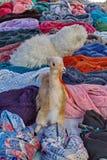 Fileiras dos scarves fotos de stock royalty free
