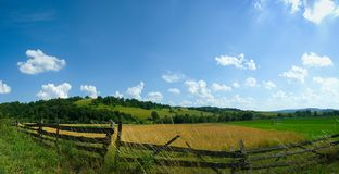 Fileld panorama in summer Royalty Free Stock Photo