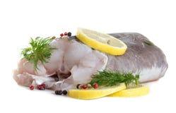 Filet d'anguille avec des épices Photographie stock libre de droits