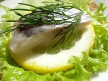 Filet de harengs sur une tranche de citron avec l'aneth et la laitue photographie stock