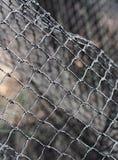Filet de pêche Photographie stock libre de droits