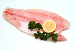 Filet de poissons photo stock