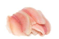 Filet de poissons photographie stock