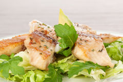 Filet de poissons avec de la salade fraîche. image libre de droits