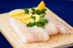 Filet de poissons crus Images libres de droits