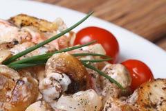 Filet de poulet avec des champignons et le macro de sauce photo stock