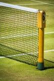 Filet de tennis sur la cour d'herbe professionnelle en soleil Photo stock