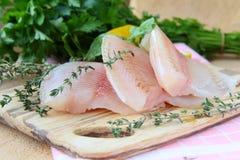 Filet des poissons crus frais avec des herbes Photographie stock libre de droits