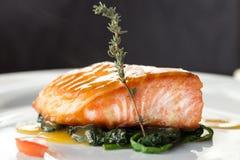 Filet des poissons rouges Images stock