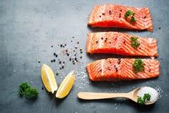 Filet des saumons photographie stock libre de droits