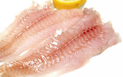 Filet fish Stock Images