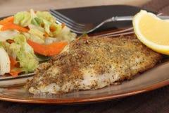 Filet frit de poisson-chat images stock