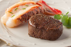 Filet and lobster Royalty Free Stock Photography