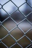 Filet métallique couvert de gelée Image stock