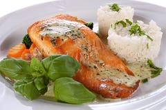 Filet saumoné Photographie stock libre de droits
