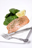 Filet saumoné Images stock
