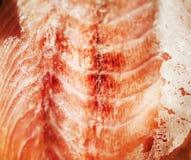 Filet saumoné frais, plan rapproché extrême Photographie stock libre de droits