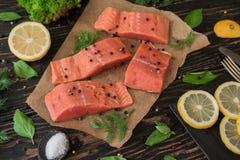 Filet saumoné sur le papier parcheminé Images stock