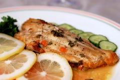 Filet van vissen en zijsalade Royalty-vrije Stock Foto